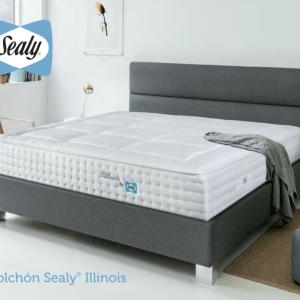 Colchón Illinois Sealy